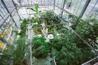 An aerial view of the bioponds large greenhouse